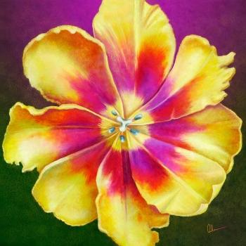 "<a href=""http://maryahernartist.com/yellow-tulip-squared/""> Yellow Tulip Squared</a>"