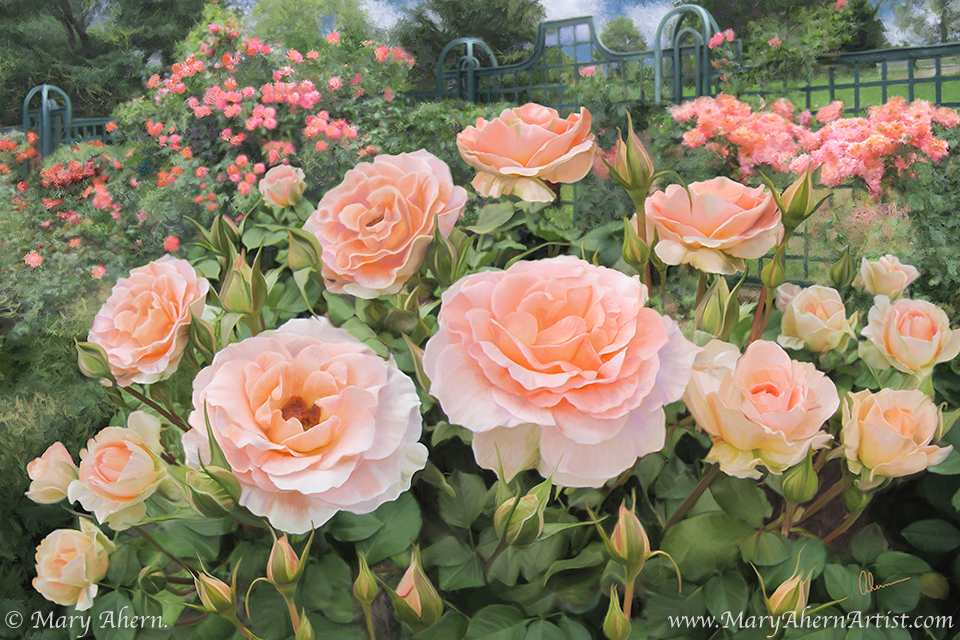 Peggys Rose Garden Painting by Mary Ahern Artist Mary Ahern