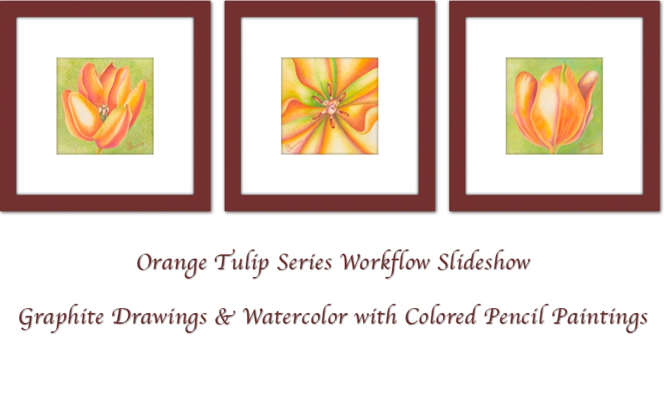 Orange Tulips with Watercolor and Colored Pencils